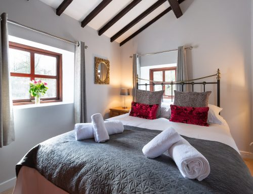 Courtyard Cottage – Pet Friendly Holiday Cottages