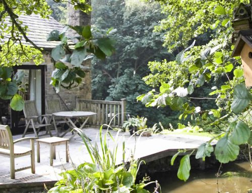 Bluebell Studio – Preston Holiday Cottage