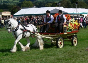 Chipping Agricultural Show